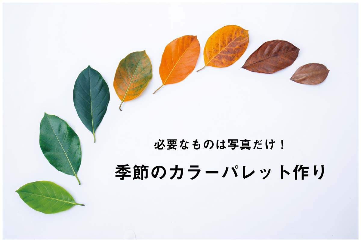 写真でかんたん!季節のカラーパレット作り 北海道・旭川のホームページ・DTPデザイン制作会社、ドリームクリエイト